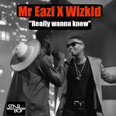 Photo of Mr Eazi Ft. Wizkid – Really Wanna Know Remix