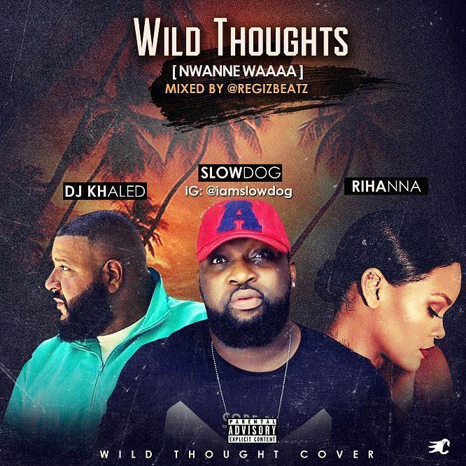 Photo of SlowDog – Nwanne Waa (Wild Thoughts Cover)