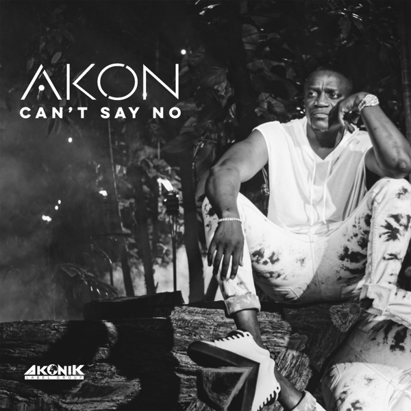 Photo of [Music + Video] Akon – Can't Say No