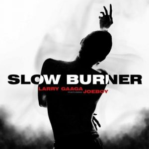 Download Larry Gaaga ft. Joeboy – Slow Burner