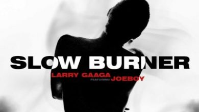 Photo of Larry Gaaga ft. Joeboy – Slow Burner