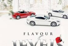 Photo of Flavor – Levels